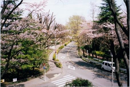 団地 石神井 公園